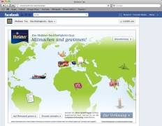 World map in the Facebook campaign